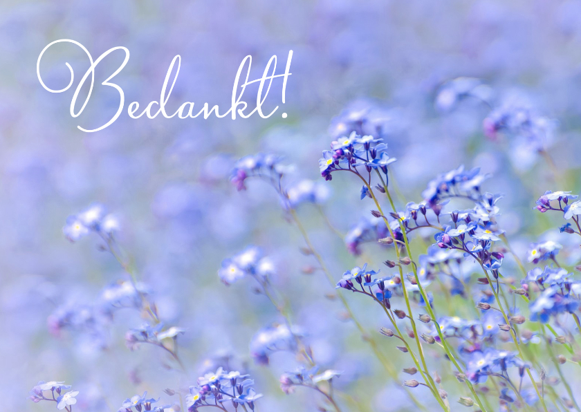 Bedankkaartjes - Bedankt algemeen bloemen foto