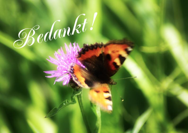 Bedankkaartjes - Bedankt vlinder zelf invullen