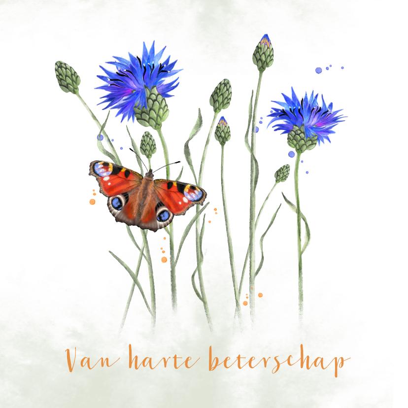 Beterschapskaarten - Beterschap korenbloemen met dagpauwoog-vlinder