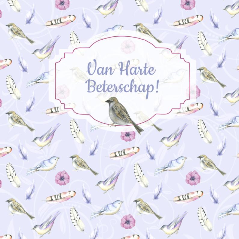 Beterschapskaarten - Beterschap vogeltjes veertjes