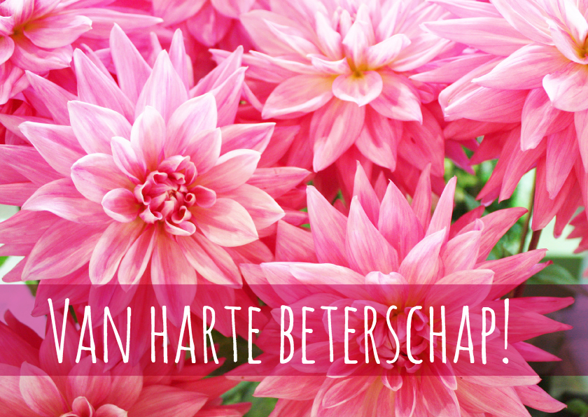 Beterschapskaarten - Beterschap vrolijke bloemenkaart