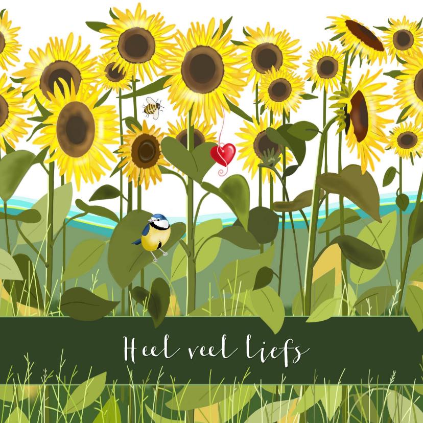 Beterschapskaarten - Beterschap - zonnebloemen en een pimpelmeesje
