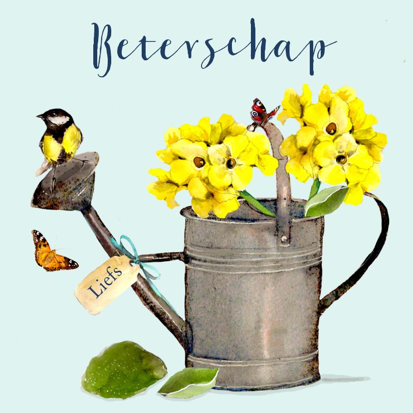 Beterschapskaarten - Beterschapskaart Gieter met geel vogeltje
