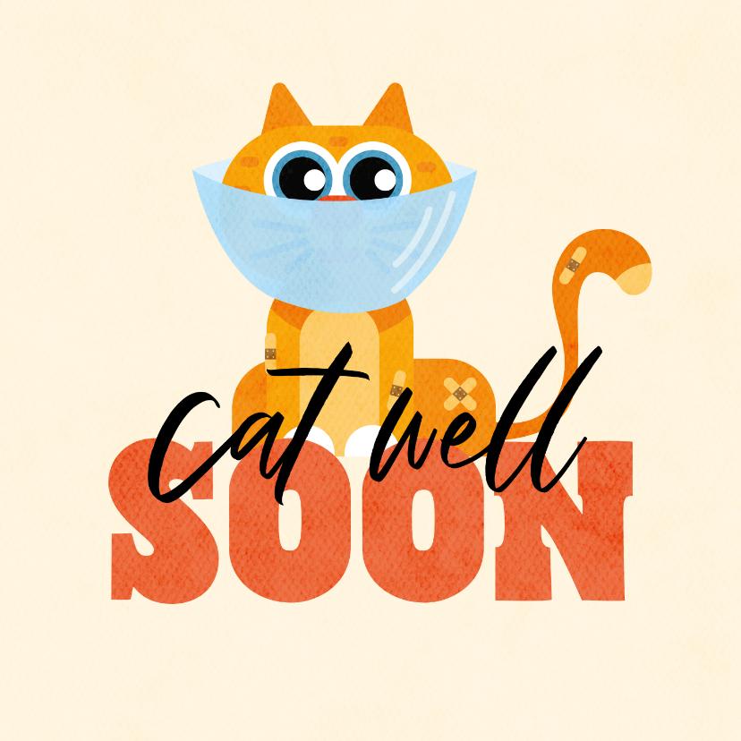 Beterschapskaarten - Beterschapskaart grappig kat cat well soon