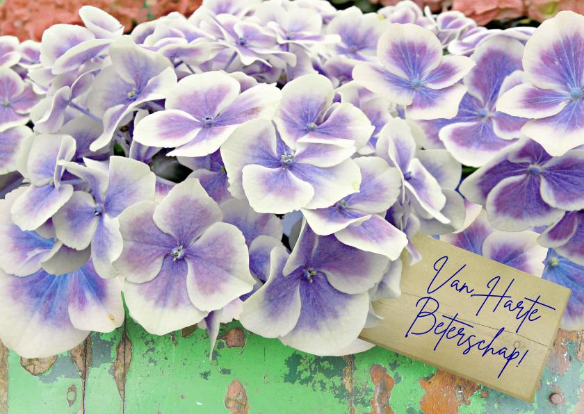 Beterschapskaarten - Beterschapskaart Hortensia bloemen op steigerhout