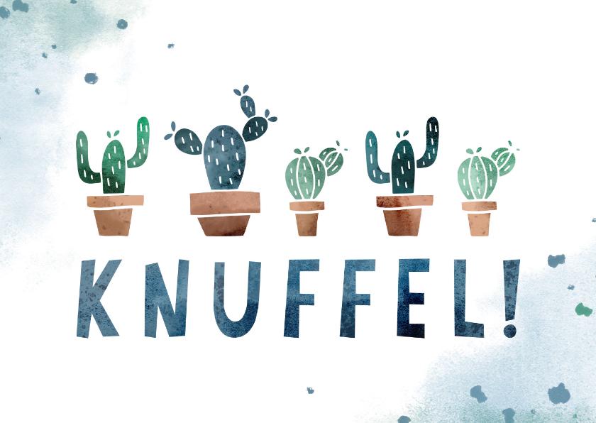 Beterschapskaarten - Beterschapskaart knuffel met cactussen