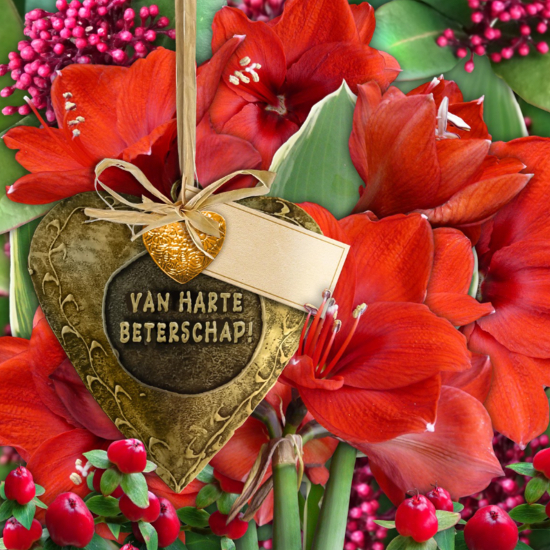 Beterschapskaarten - Beterschapskaart met bronskleurig hart en rode amaryllissen