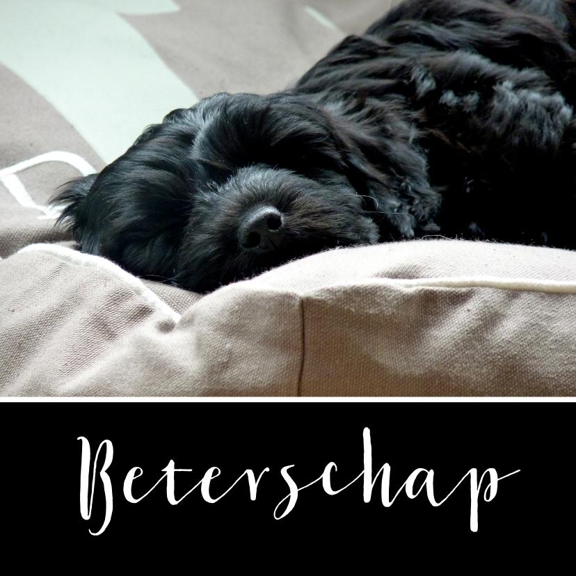 Beterschapskaarten - Beterschapskaart slapende hond