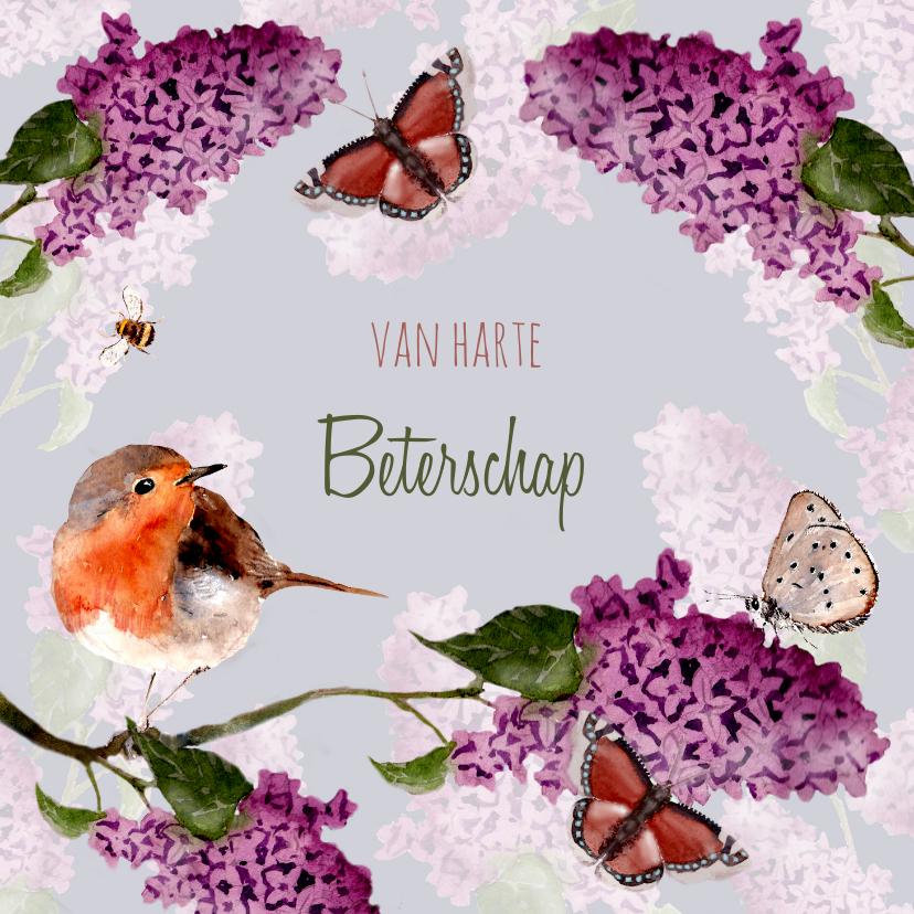 Beterschapskaarten - Beterschapskaart vogel tussen bloeiende Seringen