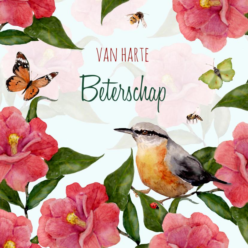 Beterschapskaarten - Beterschapskaart Vogel tussen fleurige bloemen