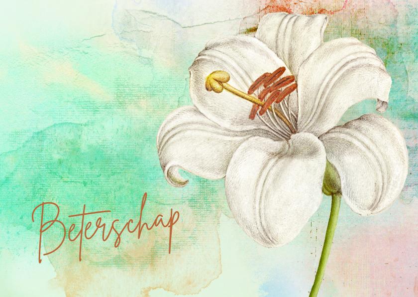 Beterschapskaarten - Beterschapskaart witte lelie painting