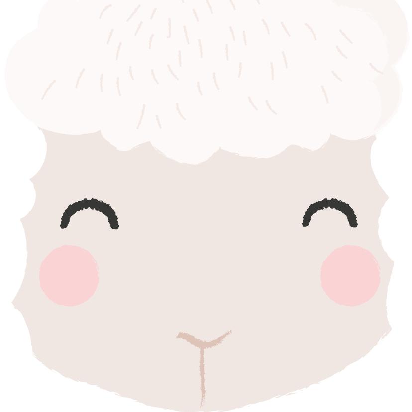 Beterschapskaarten - Lief beterschap kaartje met het gezicht van een schaapje