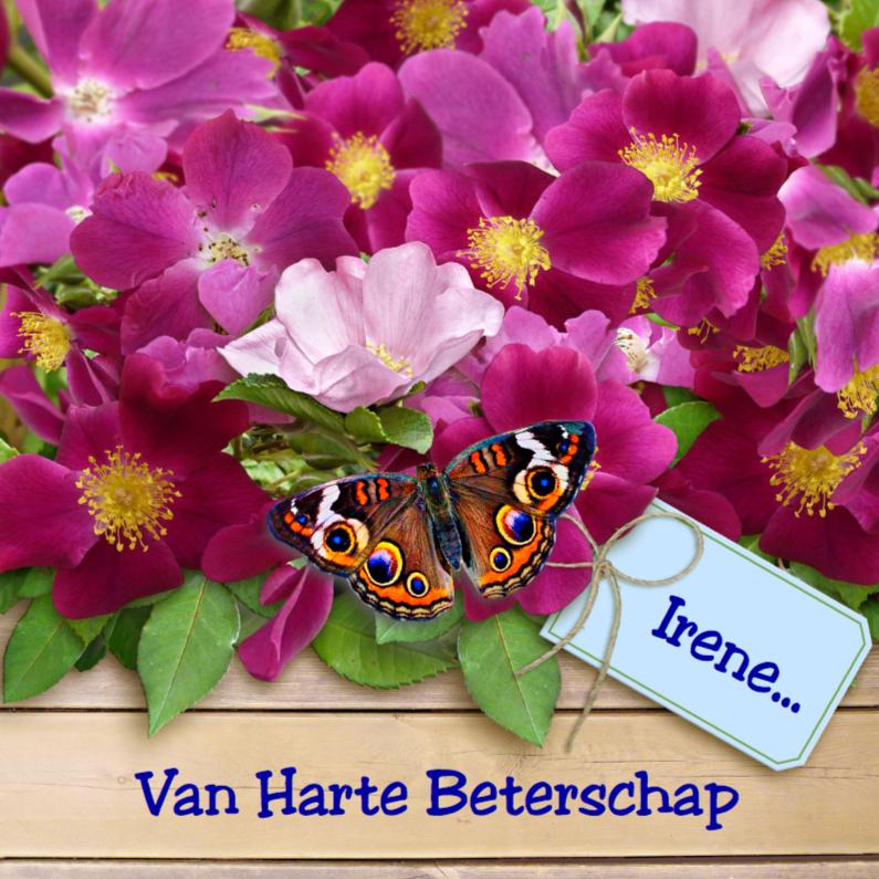 Beterschapskaarten - Warme beterschapskaart met wilde rozen en vlinders