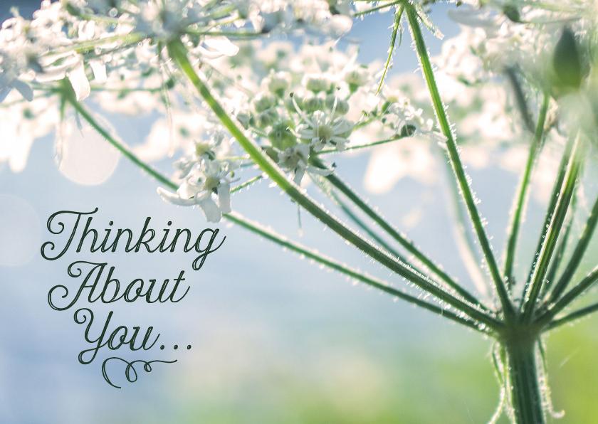 Bloemenkaarten - Bloemenkaart thinking about you zomaar liefs
