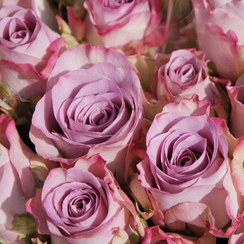 Bloemenkaarten - Roze rozen fotokaart
