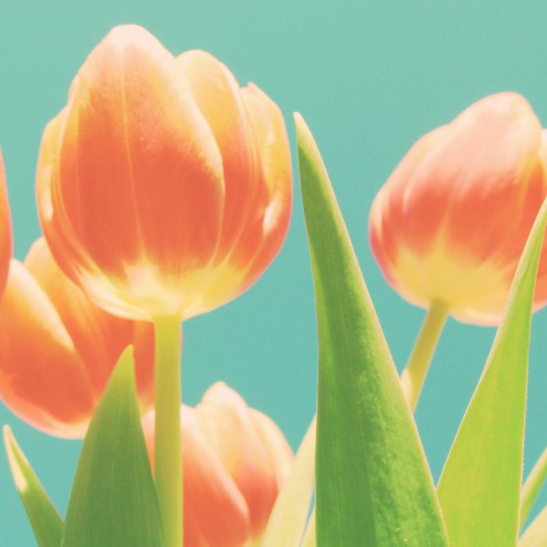 Bloemenkaarten - tulpen compositie