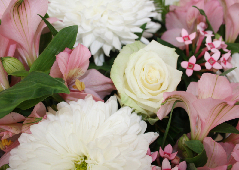 Bloemenkaarten - witte roze bloemen