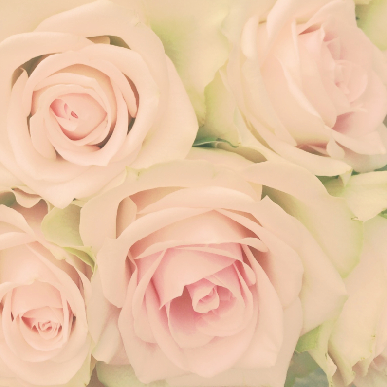 Bloemenkaarten - zachte rozen 2