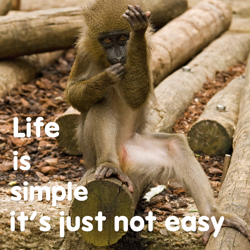 Coachingskaarten - Life is simple not easy - aanpasbaar