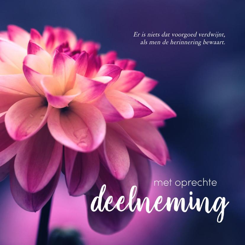 Condoleancekaarten - Condoleance - bloem met oprechte deelneming