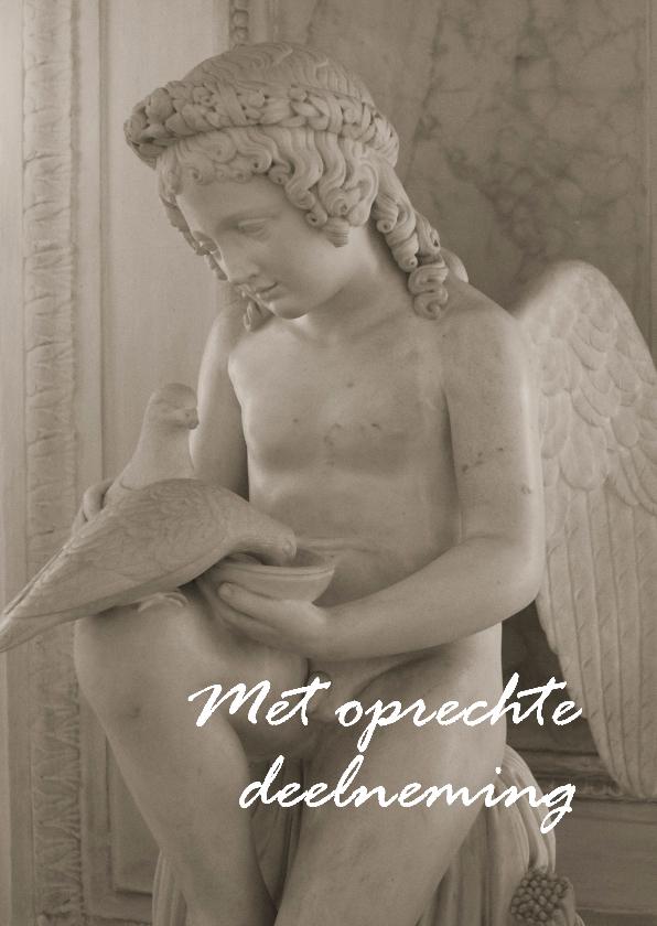 Condoleancekaarten - Condoleance kaart Engeltje met twee duiven
