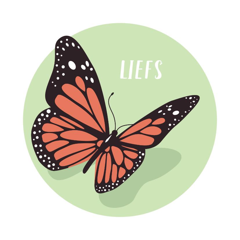 Condoleancekaarten - Condoleance kaartje met sierlijke mooie vlinder