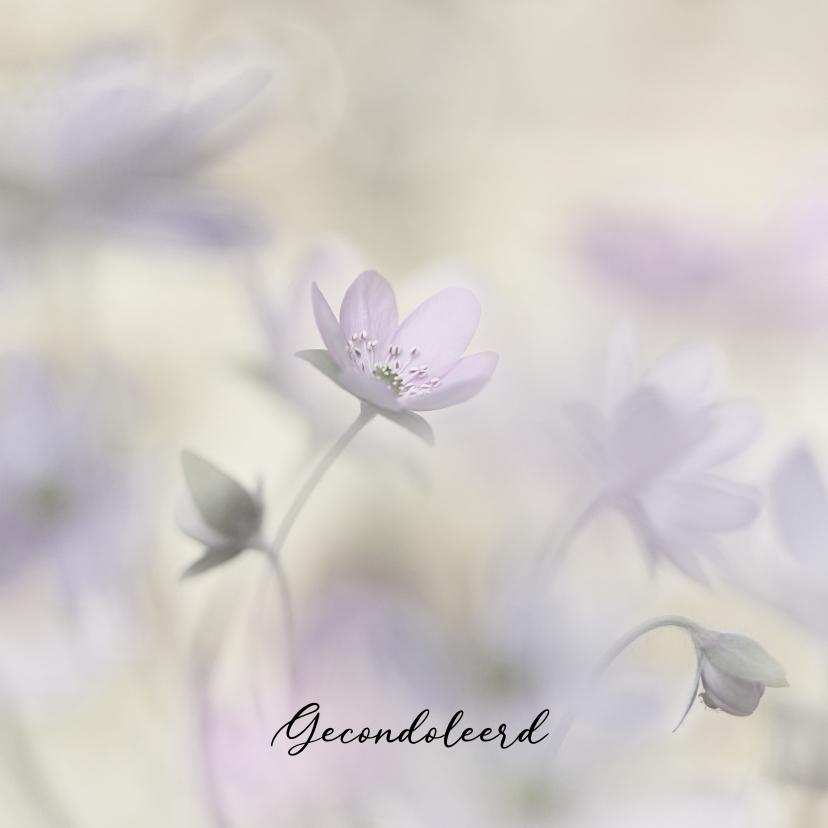 Condoleancekaarten - Condoleance leverbloempjes