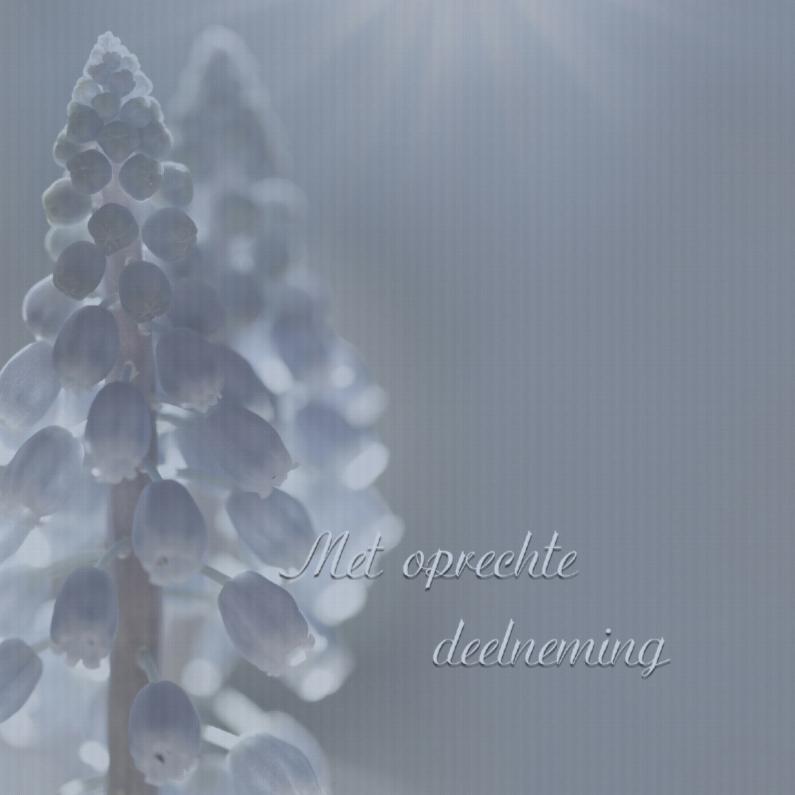 Condoleancekaarten - Condoleance met blauwe druifjes