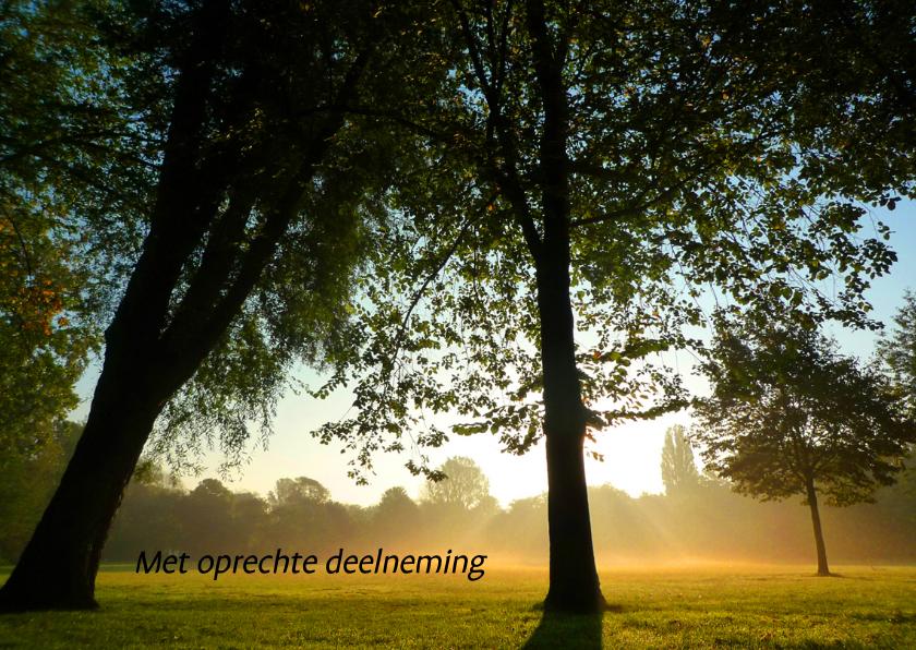 Condoleancekaarten - Condoleance stemmige bomen