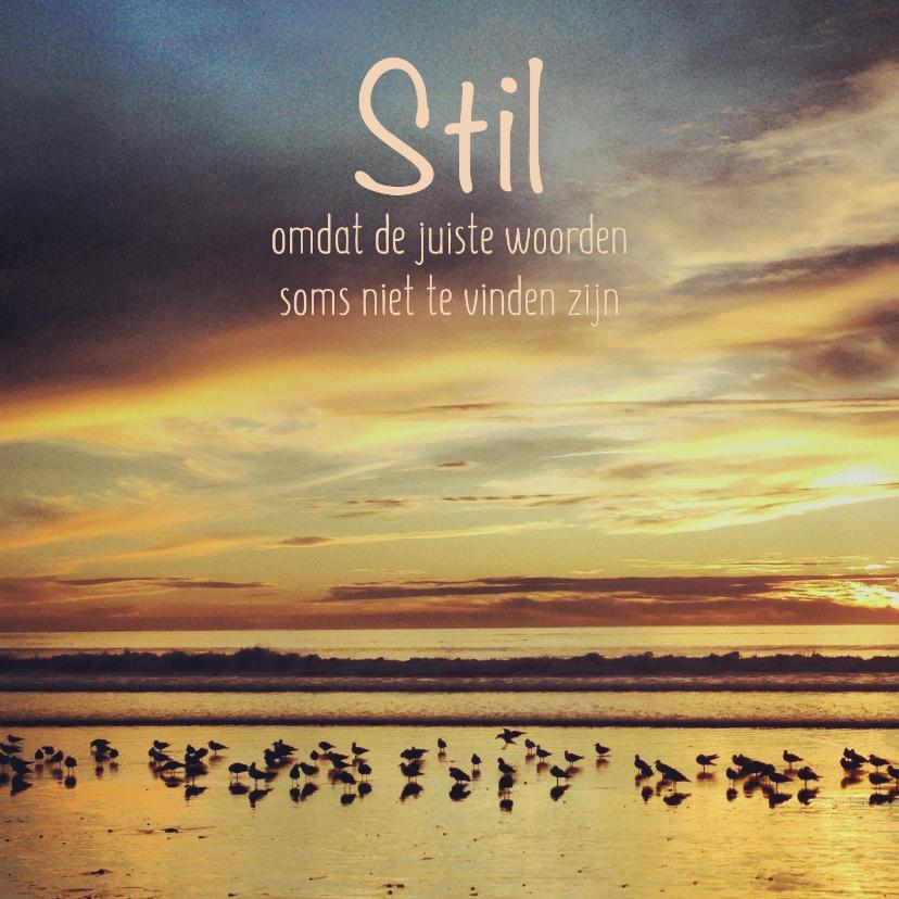 Condoleancekaarten - Condoleance - strand vogels stil