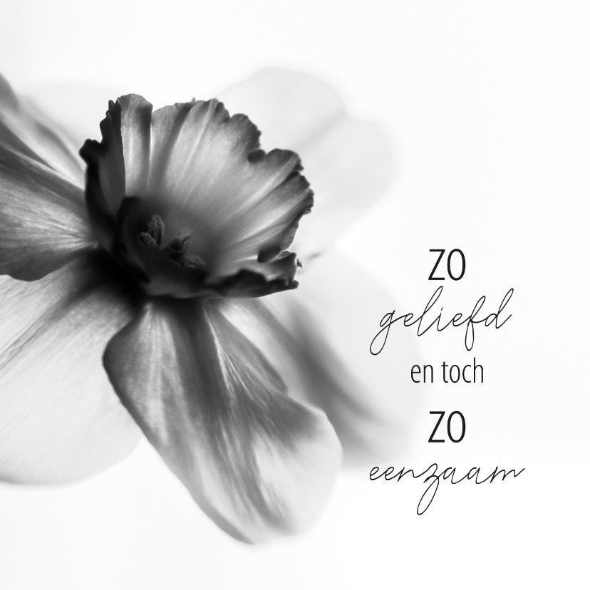 Condoleancekaarten - condoleance zo geliefd en toch zo eenzaam