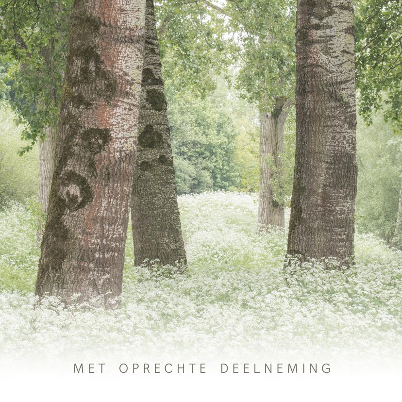 Condoleancekaarten - Condoleancekaart met bomen