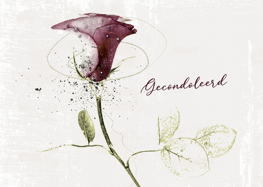 Condoleancekaarten - Condoleancekaart Roos Bordeaux