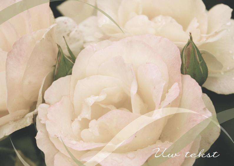 Condoleancekaarten - Condoleancekaart roos