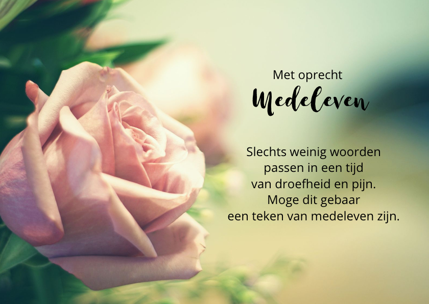 Condoleancekaarten - condoleancekaart sereen roos