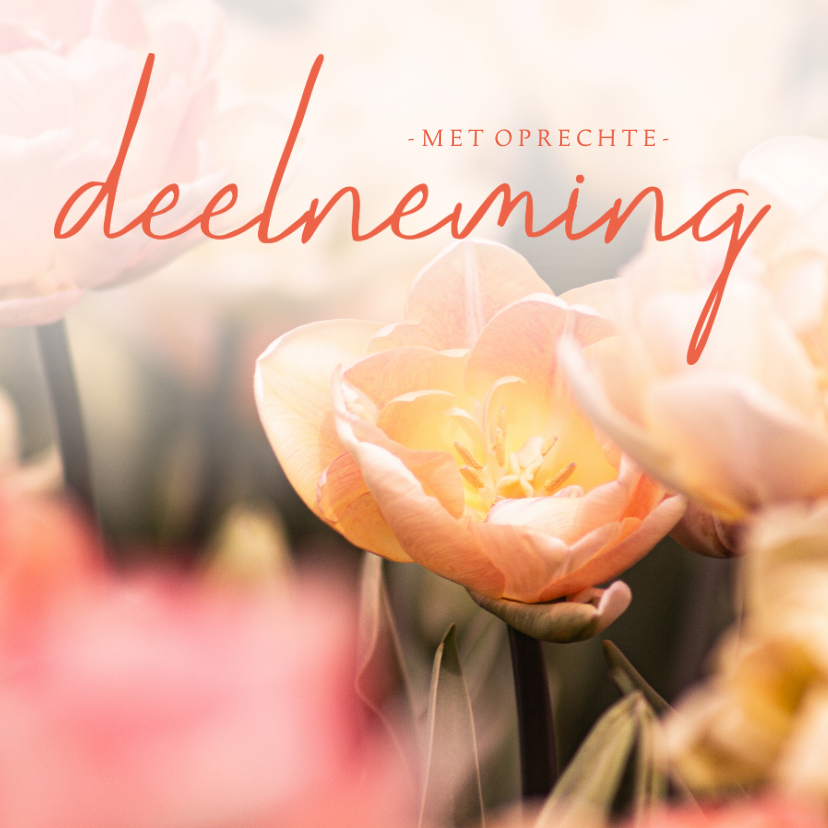 Condoleancekaarten - Condoleancekaart tulpen met oprechte deelneming