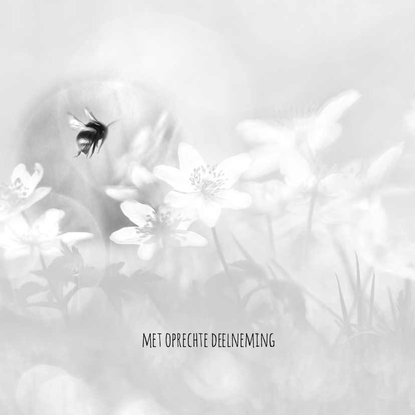 Condoleancekaarten - Deelneming bosanemonen