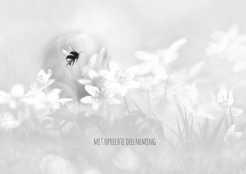 Condoleancekaarten - Deelneming met bosanemonen