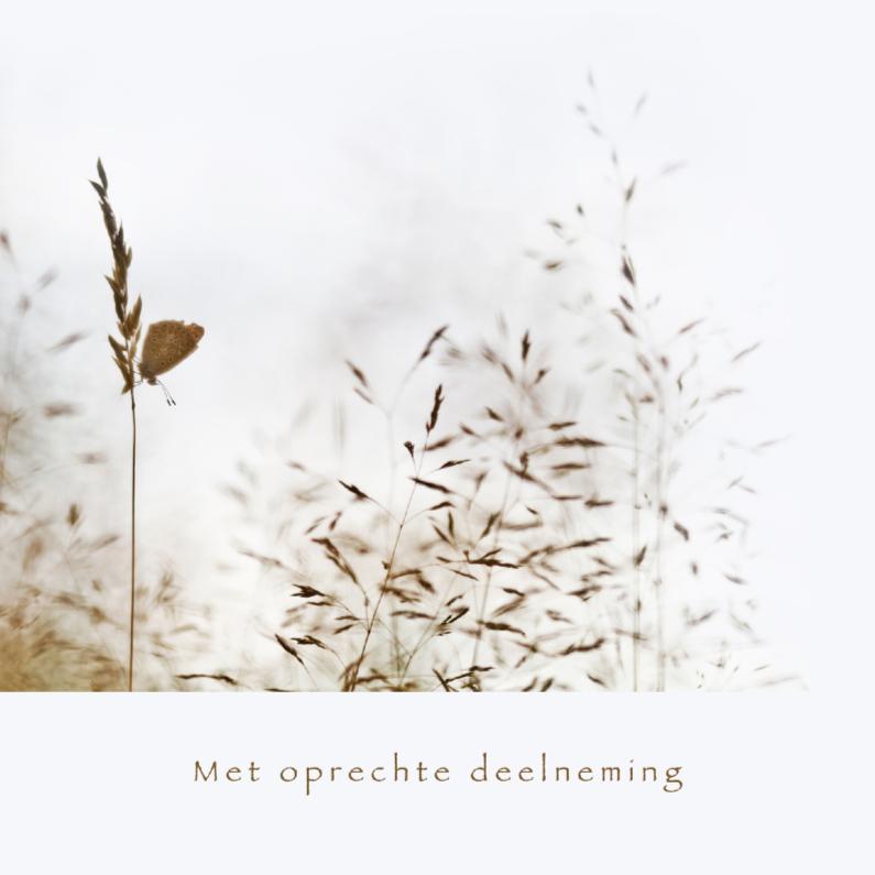 Condoleancekaarten - Deelneming - vlinder met grassen