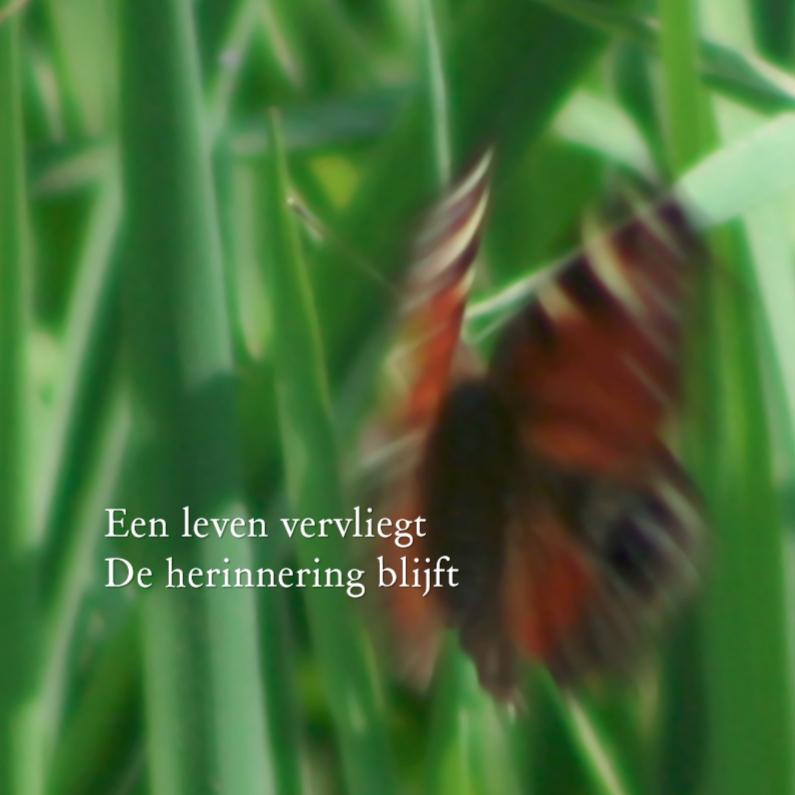 Condoleancekaarten - een leven vervliegt - vlinder