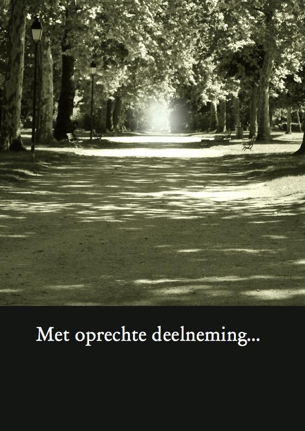 Condoleancekaarten - Fotokaart bos perspectief