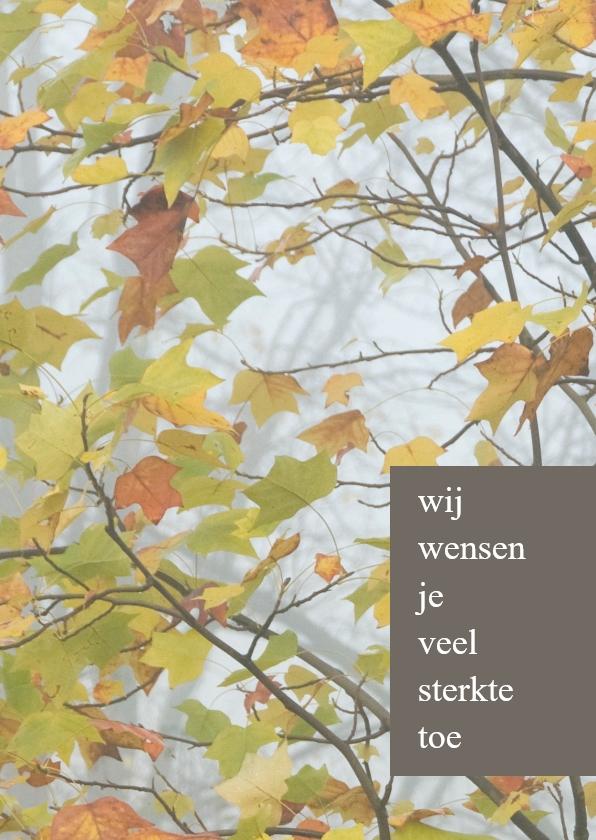 Condoleancekaarten - herfstbladeren aanpasbare tekstblokken