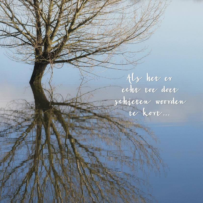 Condoleancekaarten - In water gespiegelde boom 2 - OT