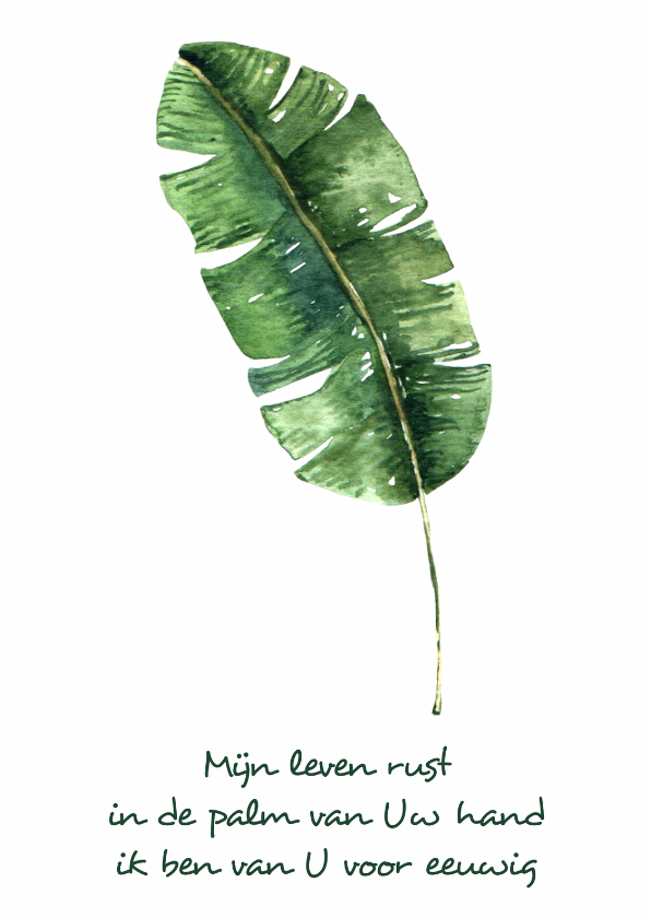 "Condoleancekaarten - Kaart ""Leaf"" Opwekking 697 - WW"