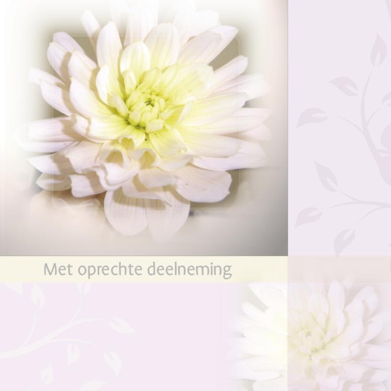 Condoleancekaarten - Met oprechte deelneming dahlia