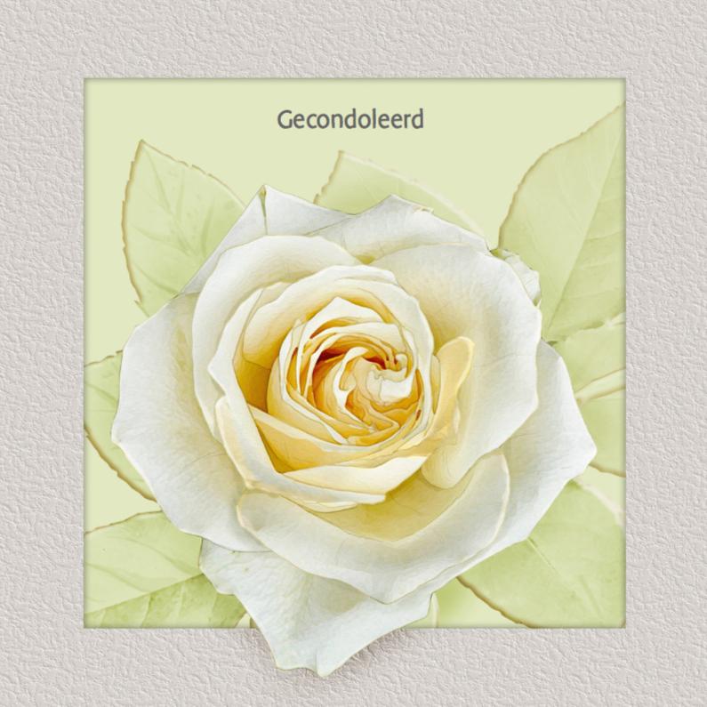 Condoleancekaarten - Mooie condoleancekaart met witte roos in kader