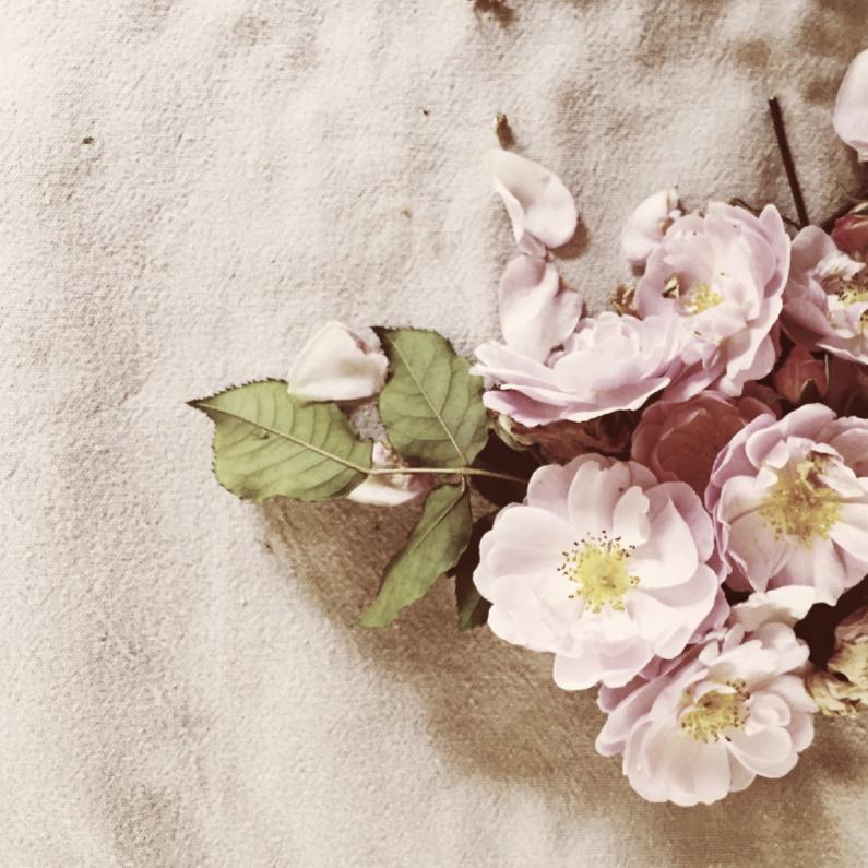 Condoleancekaarten - roosjes op een kleed