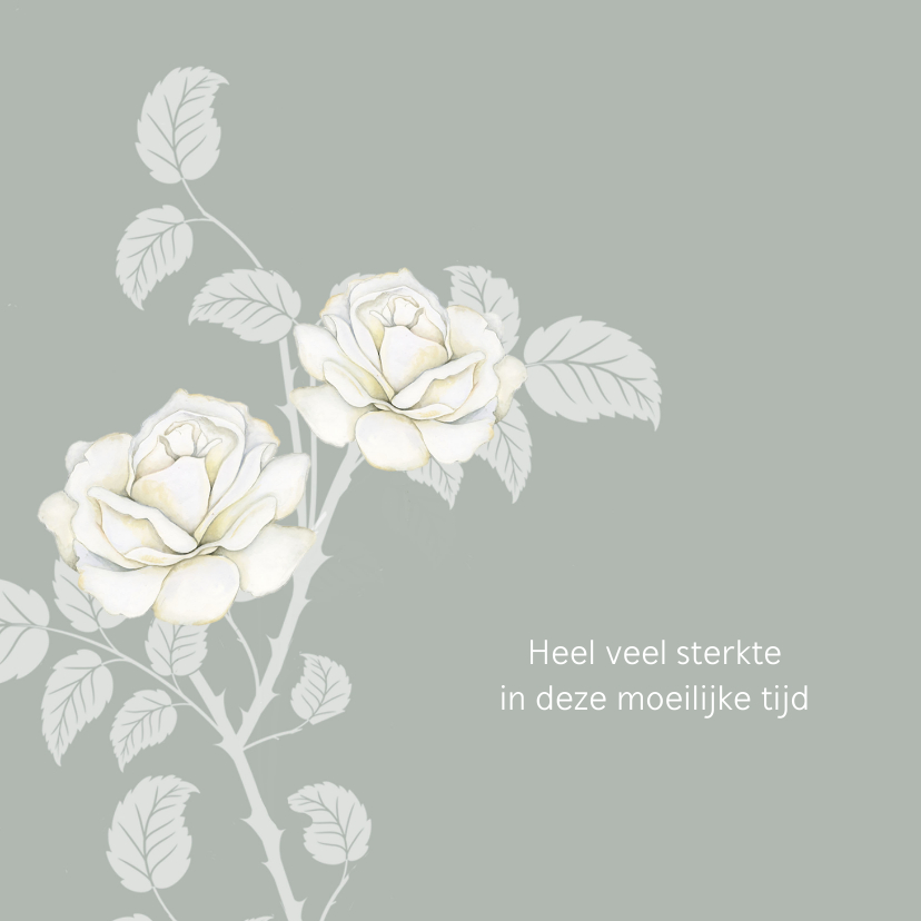 Condoleancekaarten - Sterktekaart mooie witte rozen