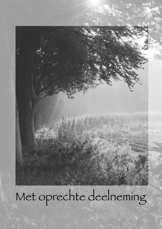 Condoleancekaarten - Vroege morgen in de herfst z-w
