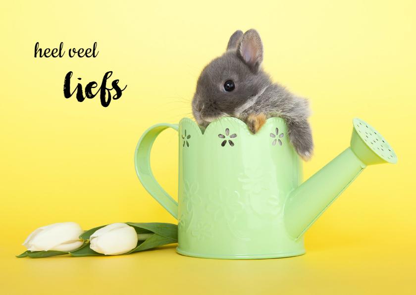 Dierenkaarten - Dierenkaart heel veel liefs konijntje